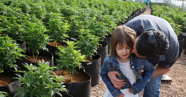 Epilepsy Foundation Head Urges Nationwide Medical Marijuana Availability