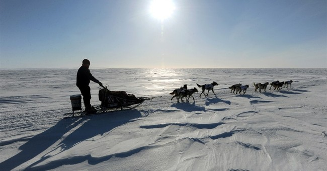 The Iditarod on 12,000 Calories a Day
