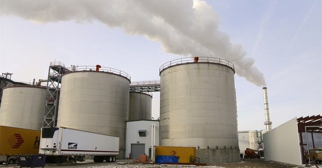 Oil could drive down ethanol profits, but industry shielded