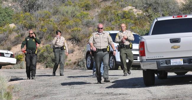 Probe ordered into deputies' beating of fleeing horseman