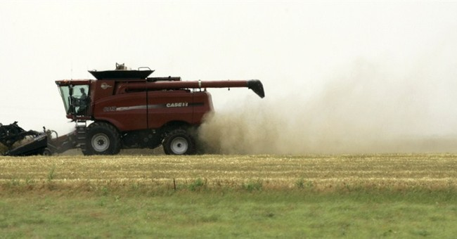 Paper towels, toilet tissue latest uses for wheat straw