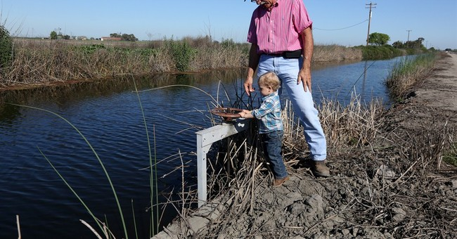 California delta's water mysteriously missing amid drought