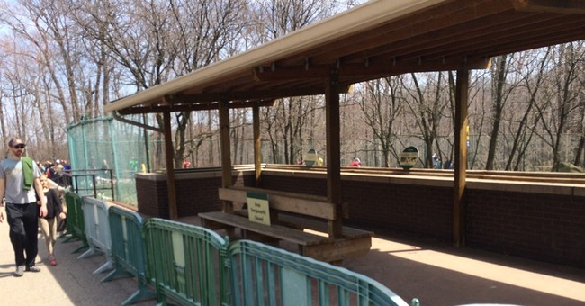 Mom charged after boy, 2, falls into cheetah pit at Ohio zoo