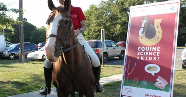 Only horse flagged in NCAA game, Rutgers' Lord Nelson, dies