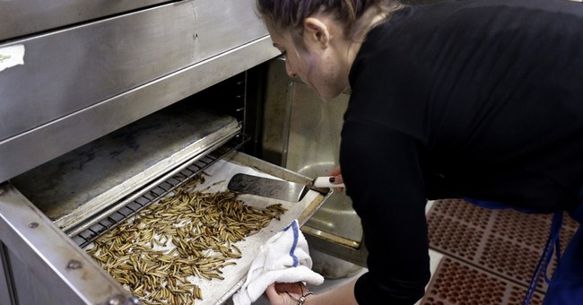 'Entopreneurs' feed growing appetite for edible insects
