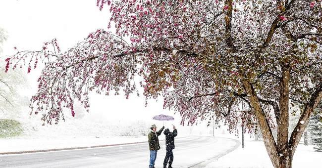 Snow falls in parts of Rockies, causes pileups in Wyoming