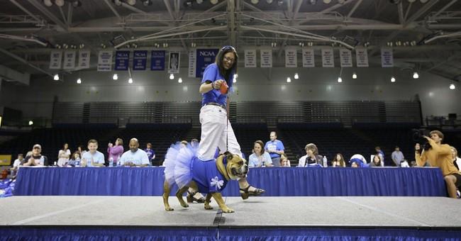 """Tank named """"Beautiful Bulldog"""" in Iowa contest"""