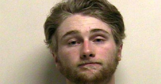 Police: Utah man arrested after video of violent cat beating