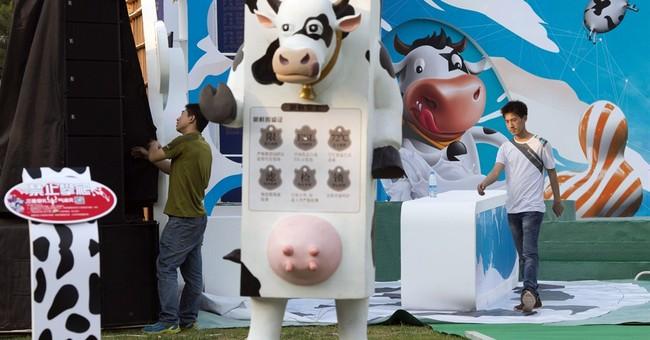 Festivals, large gatherings canceled in Beijing