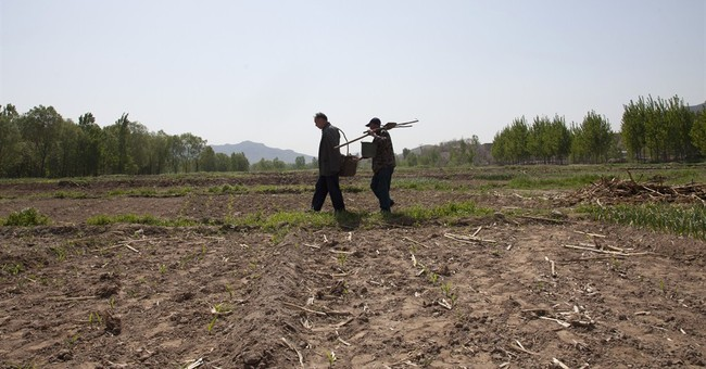 Blind man, armless friend plant thousands of trees in China