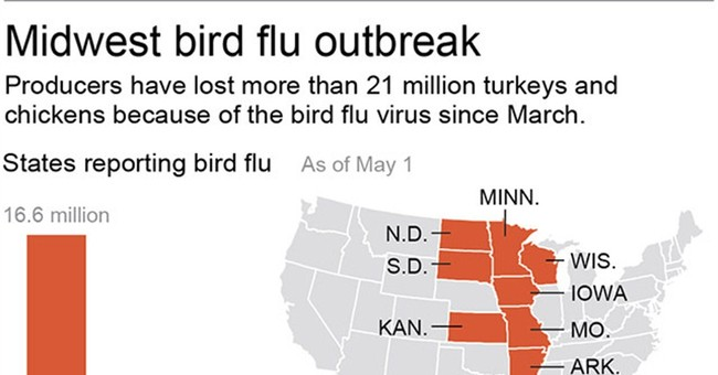 Bird flu virus raises questions scientists working to answer