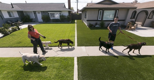 Brown lawns loom this summer in California