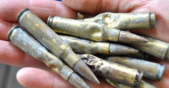 Arkansas veterinarian operates on dog that ate 23 bullets