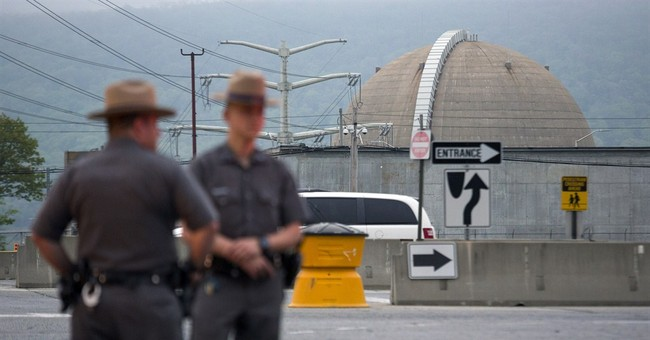 Reactor at NY nuclear plant could be offline for weeks