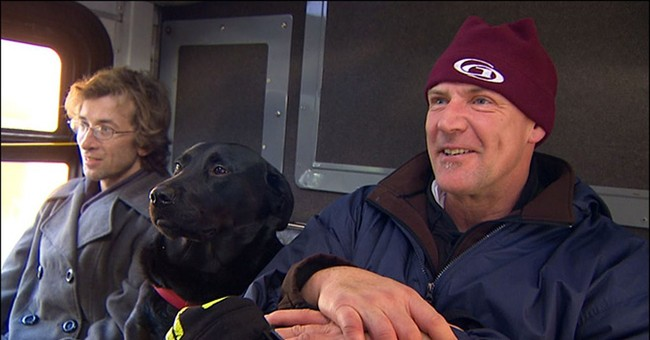 Black lab likes to take solo bus ride to her dog park stop