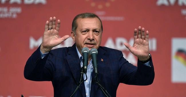 Turkey's Erdogan, at German rally, urges compatriots to vote