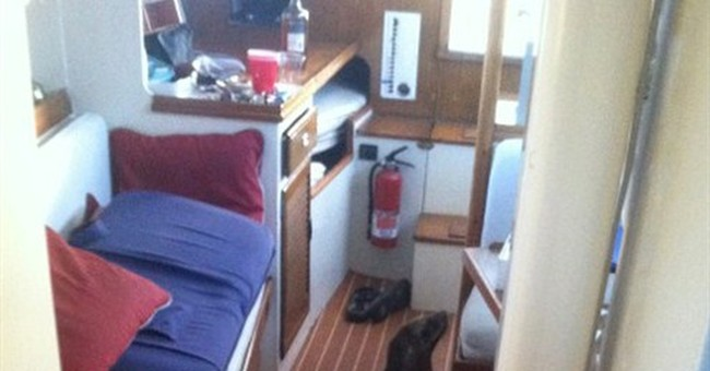 Sea lion pup startles sailor on yacht with snoring, sneezing