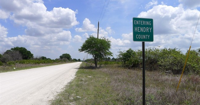 Monkey farms in Florida under scrutiny from officials