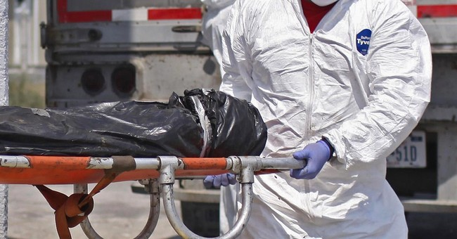 Official says Ecuador and Mexico talking about DNA bank