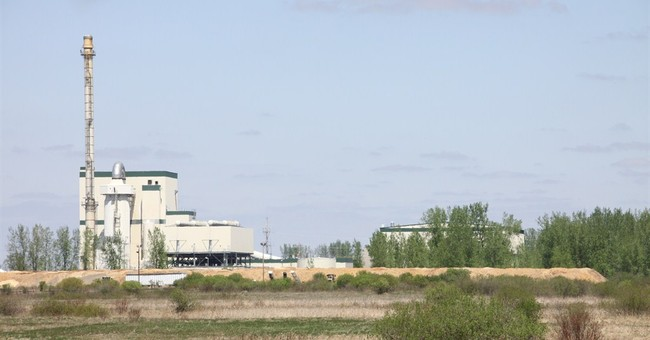 Bird flu adds to woes at Minnesota turkey litter power plant
