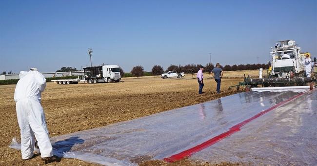 APNewsBreak: California unveils strictest rules on pesticide