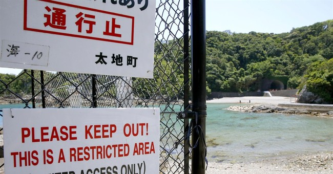 Japan town to still hunt dolphins after aquariums' rejection