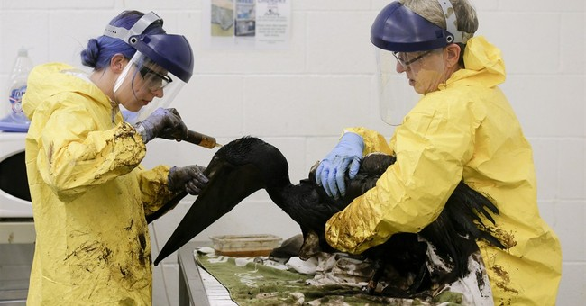 US gives order for pipe company to finish oil spill cleanup