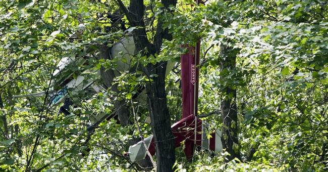 Tree branches may have saved men in helicopter crash