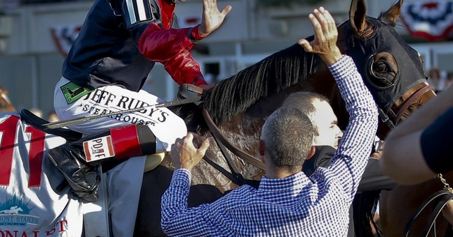Quips and tips and what it takes to win the Belmont Stakes