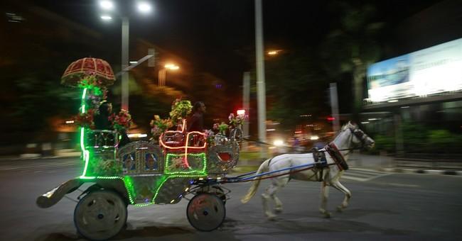 Mumbai court bans joyriding in iconic horse-drawn carriages