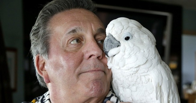 Parrot owner asks lawmakers to lift bird-ban at campsites