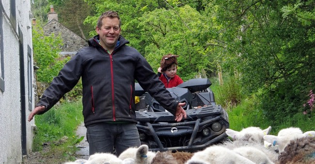 A shepherd's life proves a hit, in print and online