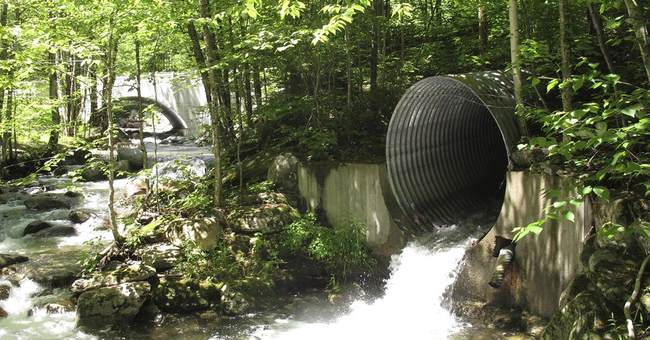 13 states catalog culverts to protect fish, mitigate floods