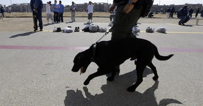 Illicit drugs 'rampant' in California state prisons