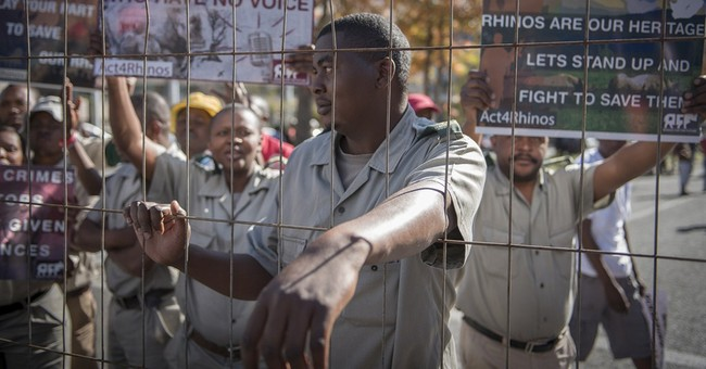 Breeders want South Africa's ban on rhino horn trade lifted