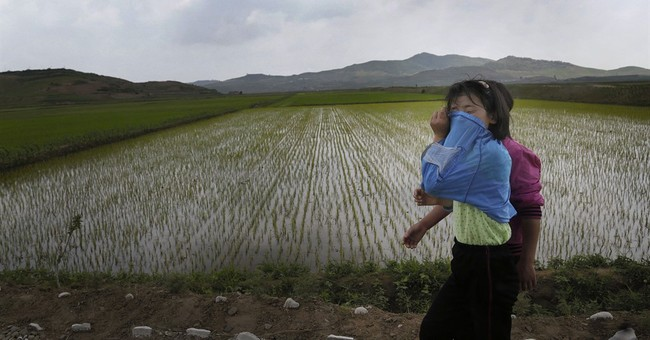 AP PHOTOS: N. Korean farmers await rains as drought lingers