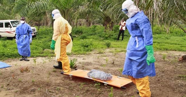 Ebola cases not slowing in Guinea, Sierra Leone