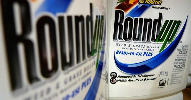 Monsanto posts higher 3Q profit, pursues Syngenta tie-up