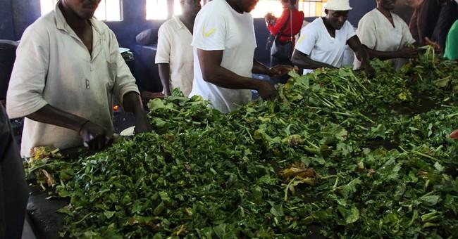 Zimbabwe parks donates bush meat to calm restive prisoners