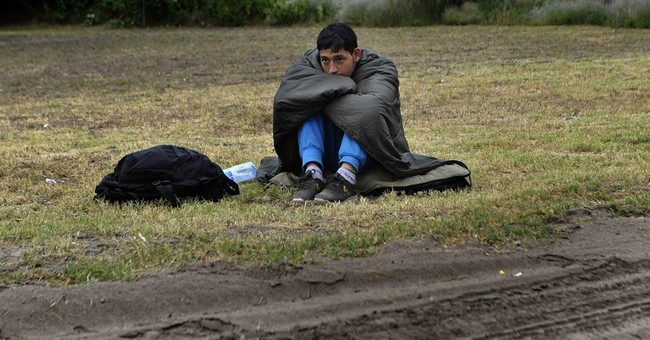 Hungary to build fence on Serbian border as fast as possible