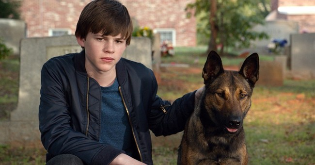 Review: 'Max,' about a kid, his dog and those gun smugglers