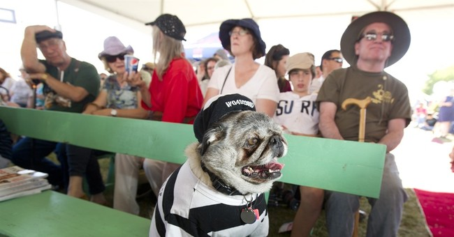 Correction: World's Ugliest Dog story