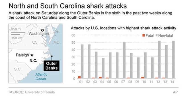 Recent spike in shark attacks reported off Carolinas coast