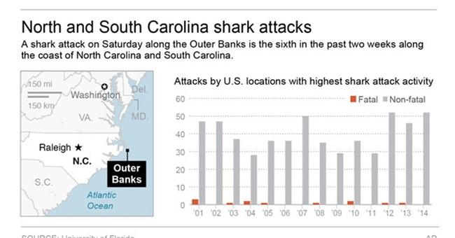Recent spike in shark attacks reported off Carolinas coast