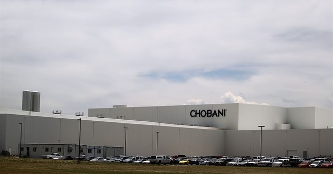 Chobani selected as Greek yogurt provider for school lunches
