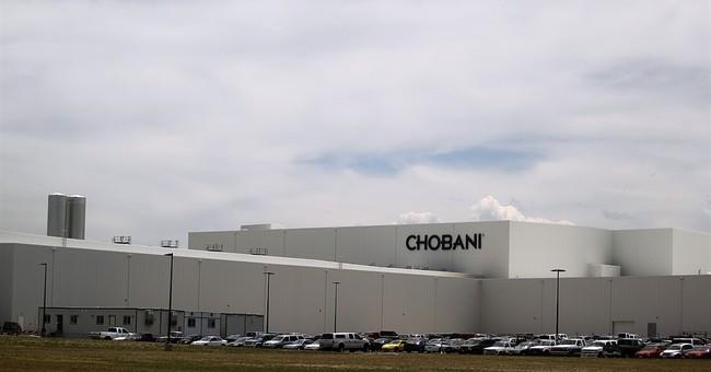 Chobani selected as Greek yogurt provider for school lunches