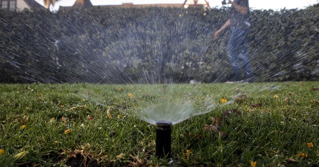 California cities show biggest water savings yet in drought
