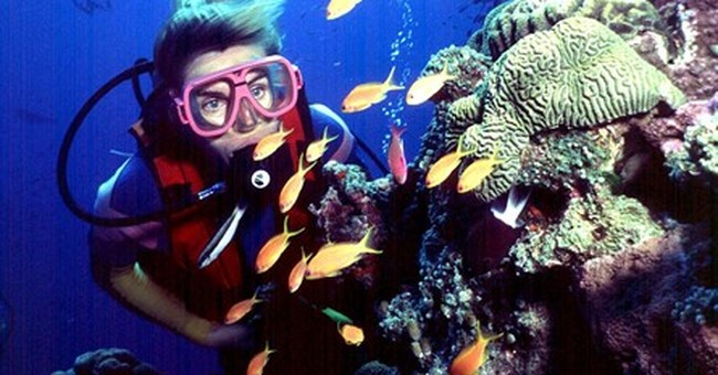 UN world heritage body warns of threat to Great Barrier Reef