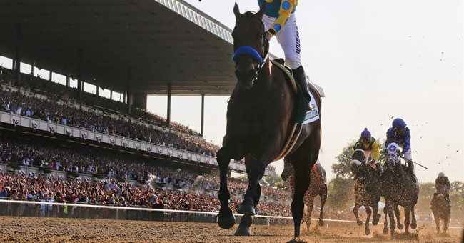 Tuning up for American Pharoah's next race in the Haskell