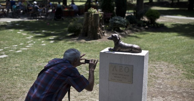 Brave dog Leo honored with monument in Serbian town